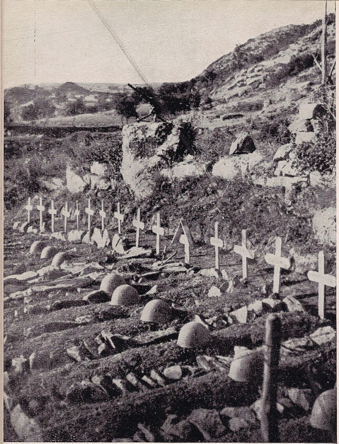 lupi-cimiteri-a-kaizza-in-albania-2